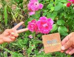 avis-jardins-musee-international-parfum-mouans-sartoux-pass-cote-azur-france