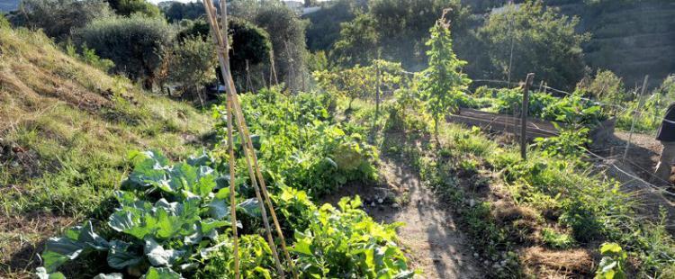 jardins-partages-terra-segurana-colomars-famille