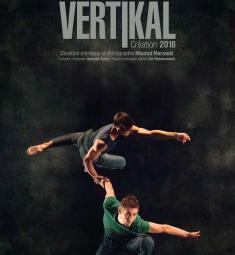 vertikal-compagnie-kafig-cannes-spectacle-danse