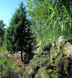 sortie-famille-enfants-jardin-botanique-nice