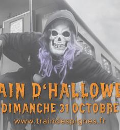 train-pignes-vapeur-halloween-2021-animations