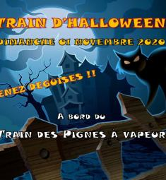 train-pignes-vapeur-halloween-2020-animations