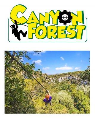 parc-aventure-enfants-famille-canyon-forest
