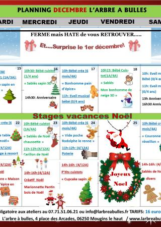 stages-vacances-enfants-arbre-bulles-mougins